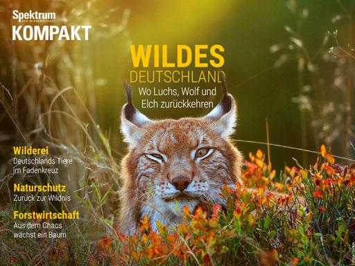 SdW_Kompakt_Wildes_Deutschland_Cover