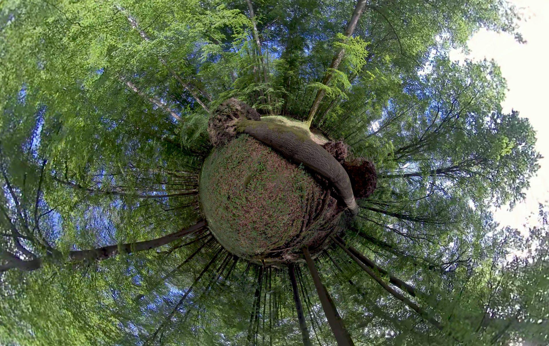 Arte Mediathek 360 Grad