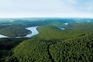 Buchenwälder des Nationalparks Kellerwald-Edersee