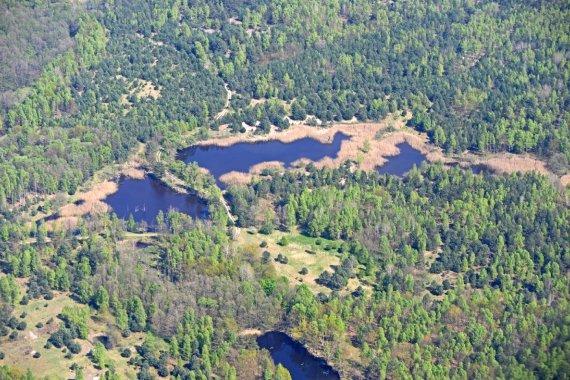 Luftaufnahme des Naturschutzgebietes Königsbrücker Heide