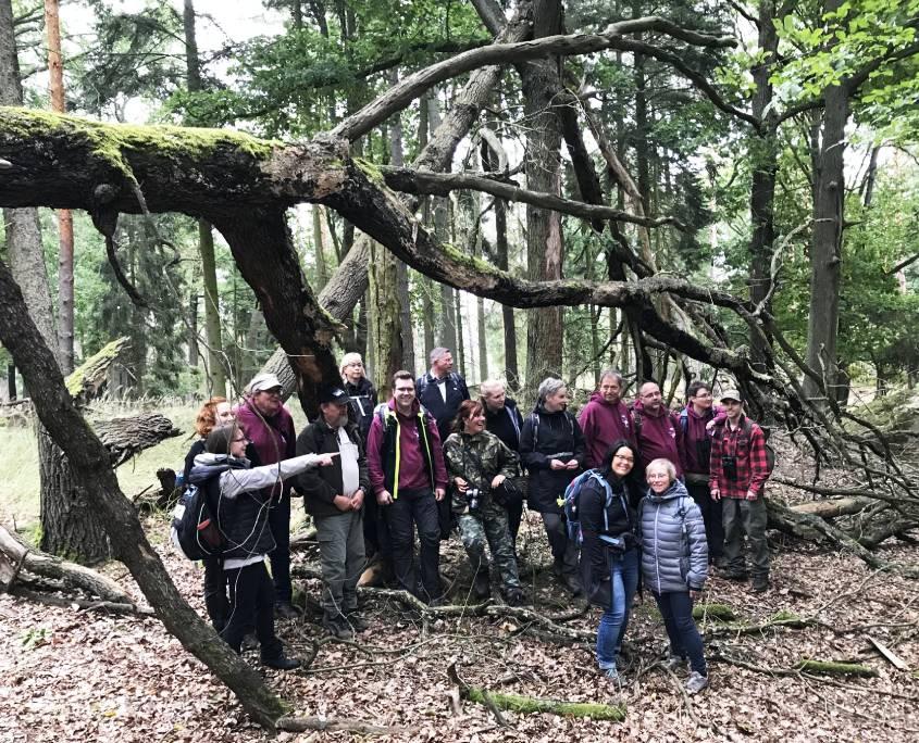 Wildnisbotschafter auf Exkursion im Wildnisgebiet Lieberose